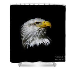 Shower Curtain featuring the photograph Bald Eagle by Steve McKinzie