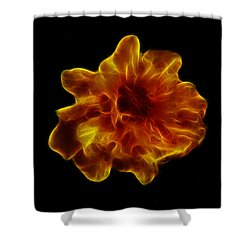 Shower Curtain featuring the photograph Ball Of Fire by Lynn Bolt