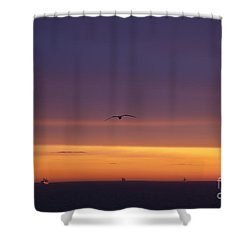 Shower Curtain featuring the photograph Baltic Cruise Ships In Convoy. by Clare Bambers