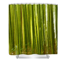Bamboo Abstract Shower Curtain by Gaspar Avila