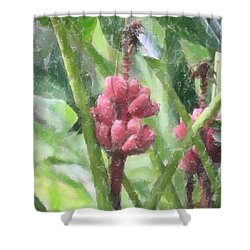 Shower Curtain featuring the photograph Banana Plant by Donna  Smith
