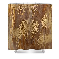 Bark Beetle Galleries Shower Curtain by Ted Kinsman