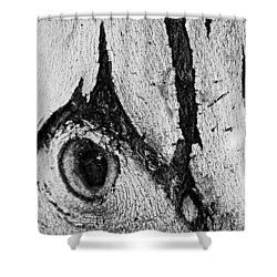 Bark Eye Shower Curtain by Colleen Coccia