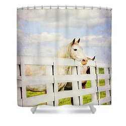 Barn Yard Dreamer Shower Curtain by Darren Fisher