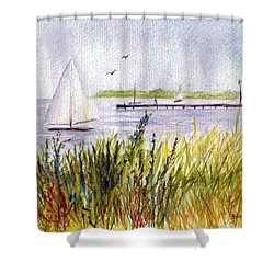 Shower Curtain featuring the painting Barnegat Sails by Clara Sue Beym