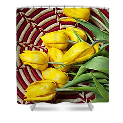 Basket Full Of Tulips Shower Curtain by Garry Gay