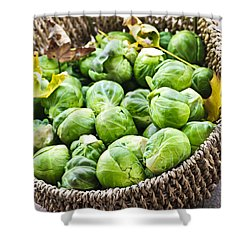 Basket Of Brussels Sprouts Shower Curtain by Elena Elisseeva