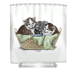 Shower Curtain featuring the drawing Basket Of Kittens - Cats Art Print Color Tinted by Kelli Swan