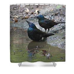 Bathing Partners Shower Curtain