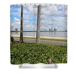 Bayshore Through Palms Shower Curtain by Carol Groenen