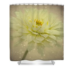 Be A Star Shower Curtain by Angela Doelling AD DESIGN Photo and PhotoArt