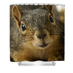 Be Friends Shower Curtain by Colleen Coccia
