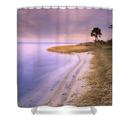 Beach Along Saint Josephs Bay Florida Shower Curtain by Tim Fitzharris