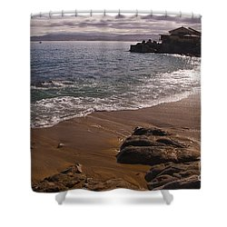 Beach At Monteray Bay Shower Curtain by Darcy Michaelchuk