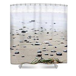 Beach Detail On Pacific Ocean Coast Of Canada Shower Curtain by Elena Elisseeva