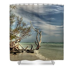 Beach Tree Shower Curtain by Sean Allen