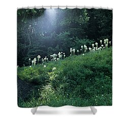 Bear-grass Ridge Shower Curtain by Sharon Elliott
