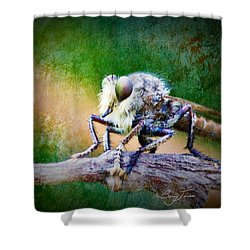 Bearded Robber Fly Shower Curtain by Barry Jones