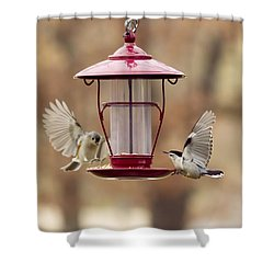 Beautiful Birds Shower Curtain
