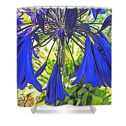 Beautiful Bluebells Close-up Shower Curtain by Anne Mott