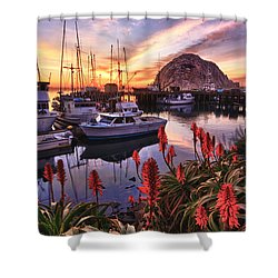 Beautiful Morro Bay Shower Curtain
