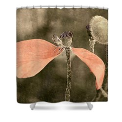 Beauty Fades Shower Curtain by Bill Pevlor