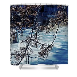 Shower Curtain featuring the photograph Beauty Of Simplicity by Janie Johnson