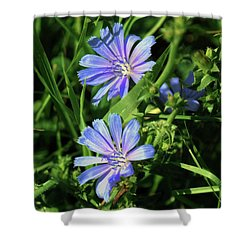 Beauty Of The Field Shower Curtain