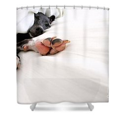 Bed Feels So Good Shower Curtain by Angela Rath