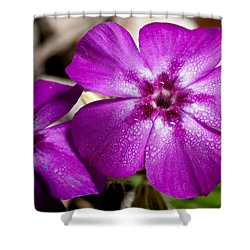 Bedeweled Shower Curtain by Christopher Holmes