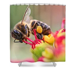 Bee At Work Shower Curtain by Ralf Kaiser