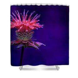 Bee Balm Shower Curtain