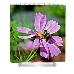Bee On Flower Shower Curtain by Susan Leggett
