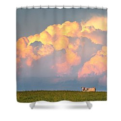 Beefy Thunder Shower Curtain