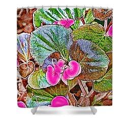 Begonia Shower Curtain by EricaMaxine  Price