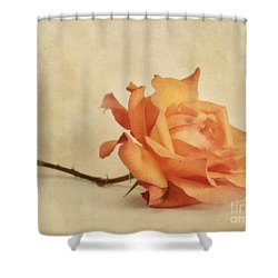 Bellezza Shower Curtain by Priska Wettstein