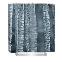 Below Zero Shower Curtain by Cathie Douglas