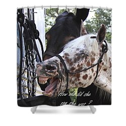 Benson Mule Day Birthday Card Photo Shower Curtain by Travis Truelove