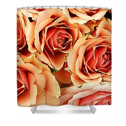 Bergen Roses Shower Curtain
