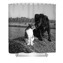 Best Buddies Black And White Shower Curtain