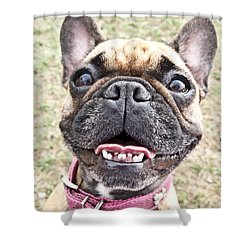 Shower Curtain featuring the photograph Best Friend by Jeannette Hunt