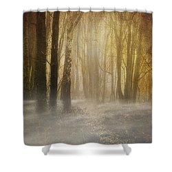 Beware Misty Woodland Path Shower Curtain by Meirion Matthias