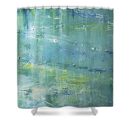 Shower Curtain featuring the painting Beyond The Pond by Dolores  Deal