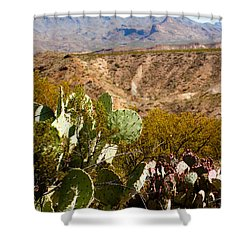 Big Bend Shower Curtain