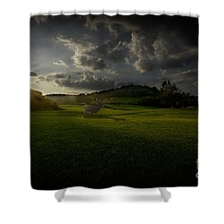 Big Buck In Field At Sunset Shower Curtain by Dan Friend