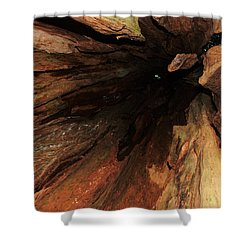 Big Cedar Shower Curtain