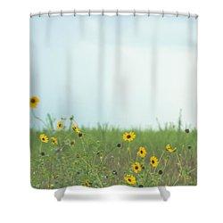 Big Eyed Susan In Watercolored Summer Shower Curtain by Ellie Teramoto