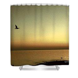 Bird At Sunrise - Sepia Shower Curtain
