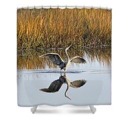 Bird Dance Shower Curtain by Kay Lovingood