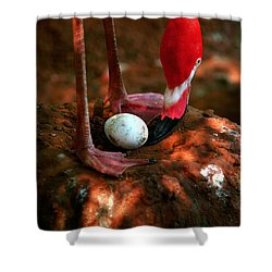 Shower Curtain featuring the photograph Bird Is The Word by Lon Casler Bixby